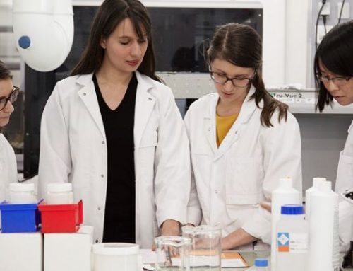 Premios a la Investigación 'For Women in Science' 2019/2020